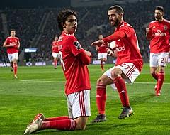 Benfica-spelers gewond na heftige aanval op spelersbus